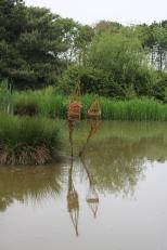 water lozenges