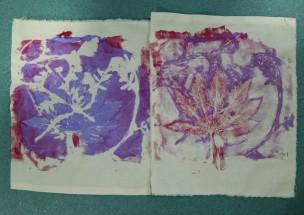 pink blue prints
